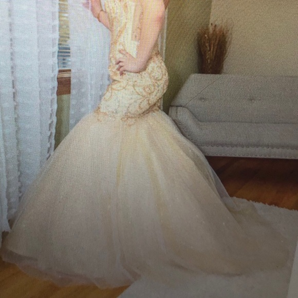 Tiffany Designs Dresses & Skirts - Champagne and gold Prom Dress